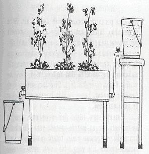 Gambar Salah satu contoh hidroponik dengan menggunakan metoda arus kontinyu