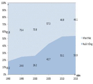 Tại sao nuôi trồng thủy sản ngày càng có tỉ trọng cao trong cơ cấu giá trị sản xuất của ngành thủy sản?