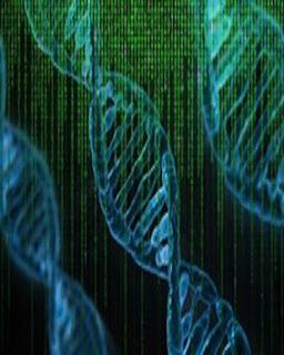genetic-algorithm
