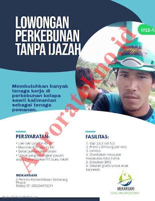 Info Lowongan Kerja CV. Mekarsari Colsultan Recruitment Juni 2019