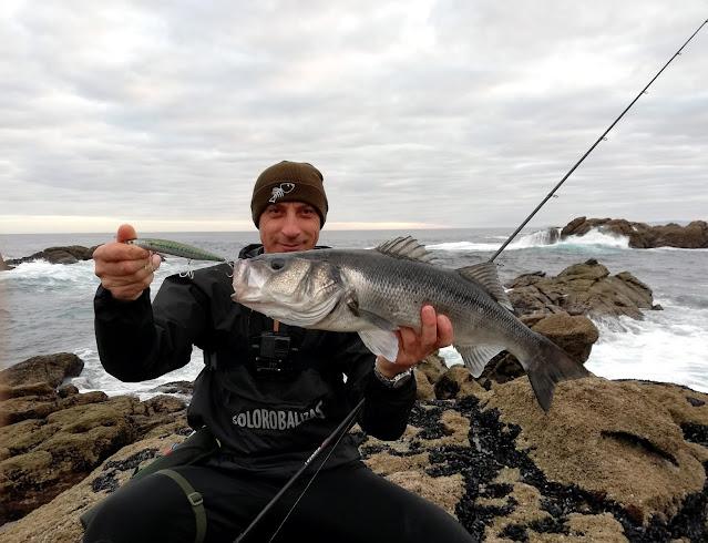 PORTADA%2BBLOG - Robalo pescado con equipo de spinning lihgt 🐟