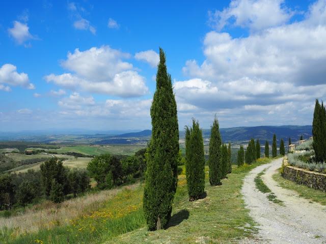 Typický obrázek z Toskánska, okolí Montalcino