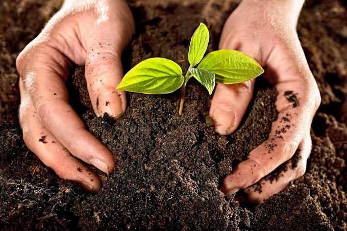Seremi del Medio Ambiente invita a participar en Consulta Pública previo a elaboración de Estrategia Nacional de Residuos Orgánicos