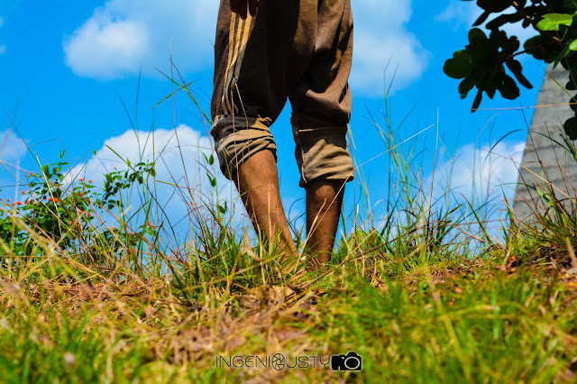 toiling, working,mangalore,farmer, sky