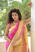 pavani new photos in saree-thumbnail-26