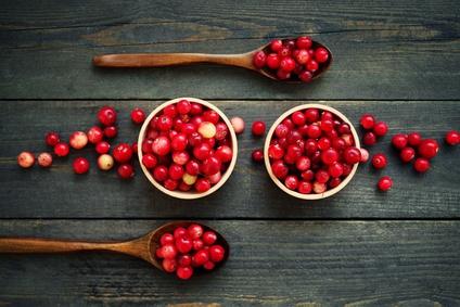 cranberries das superfood f r die kalte jahreszeit. Black Bedroom Furniture Sets. Home Design Ideas