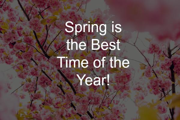 Spring, Activities, outdoor, cleaning, gardening