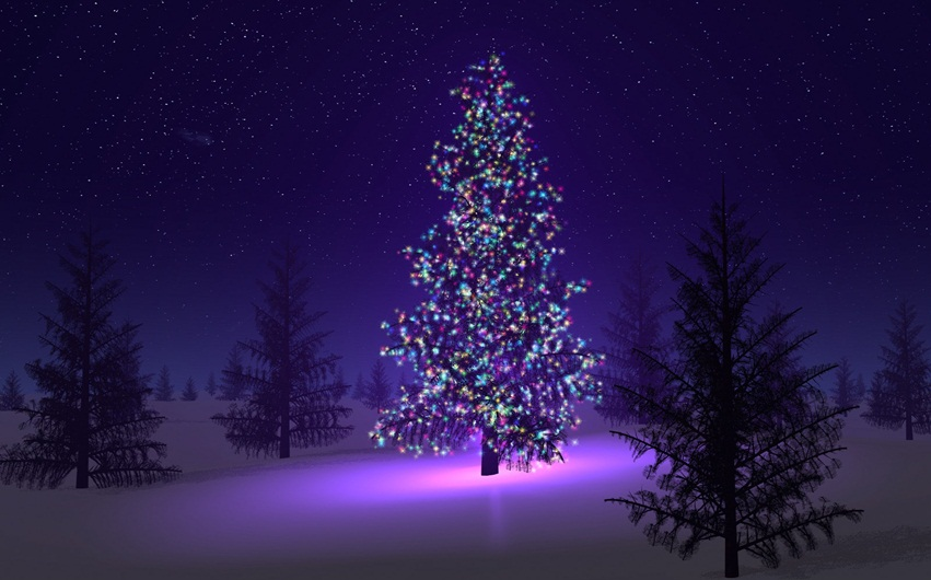 Home Made Merry Christmas Tree HD Images, Photos, Wallpapers