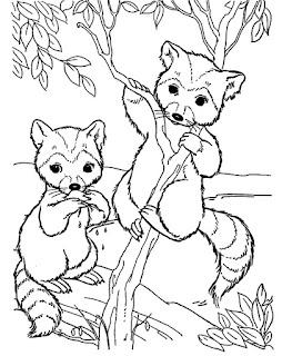 חיות חמודות לצביעה דביבונים