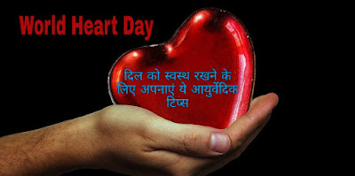 World Heart Day: दिल को स्वस्थ रखने के लिए अपनाएं ये आयुर्वेदिक टिप्स