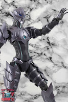 S.H. Figuarts Bemular -The Animation- 15