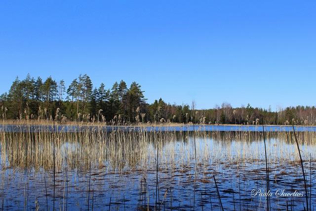 Metjärvi Ylämaalla