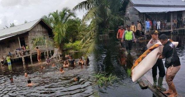 Miris, Bocah Main di Kubangan Air Depan Rumah Tewas di Sambar Buaya.