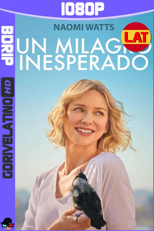 Un Milagro Inesperado (2020) BDRip 1080p Latino-Ingles MKV