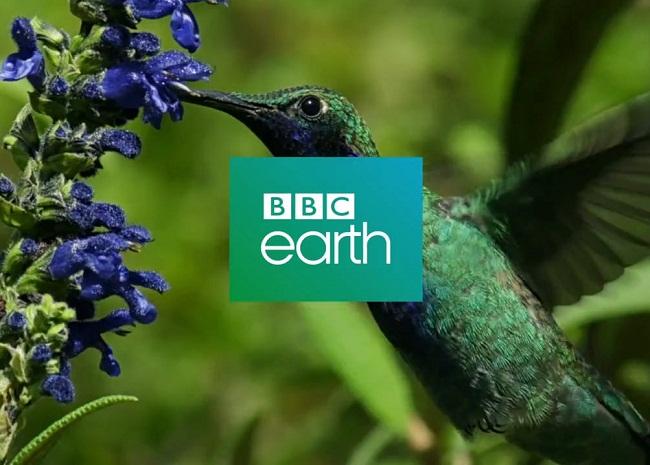 Jadwal acara BBC Earth di Indovision.