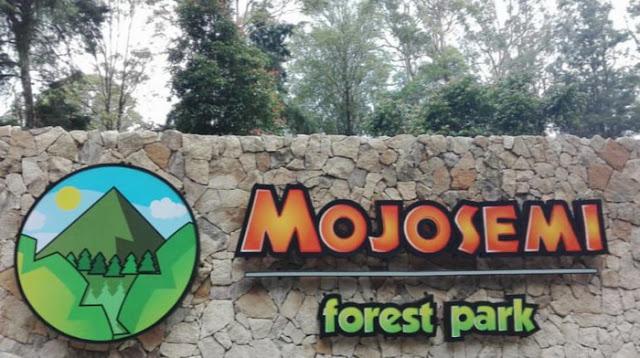 Dinosaurus Park di mojosemi forest Magetan