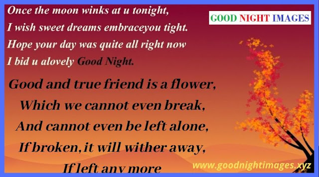 Latest Good Night Messages | good night images for friends free download