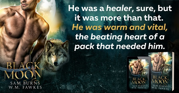 He was a healer, sure, but it was more than that. He was warm and vital, the beating heart of a pack that needed him.