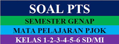 Soal PTS PJOK Kelas 1,2,3,4,5,6 SD/MI Semester 2