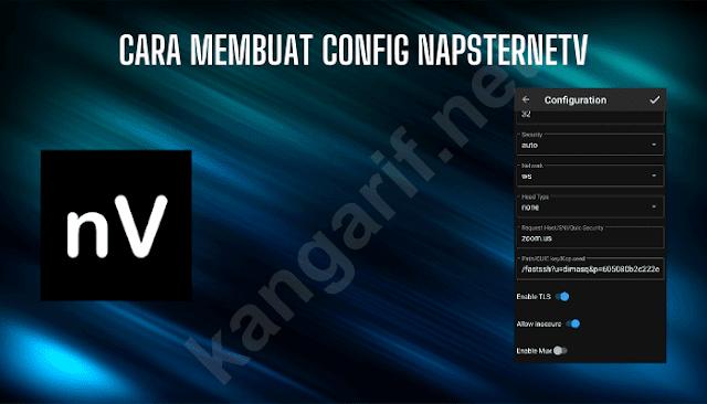 cara membuat config napsternetv