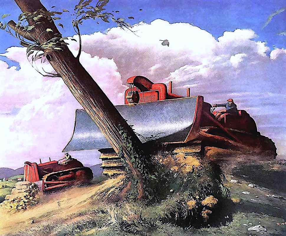 an inconsequential tree in 1955, bulldozer kills tree