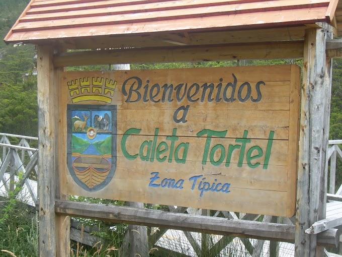 334. Viajando con Panchito 14: Caleta Tortel | T14 / A06