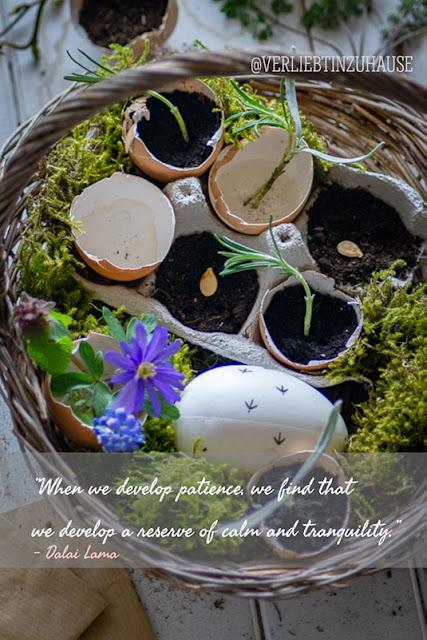 Ostern-Anzuchtschalen-Fruehling-Blumen-Deko-Verliebt-in-Zuhause