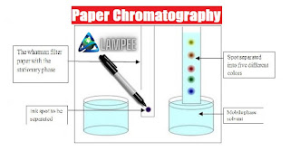 kinds of Paper Chromatography