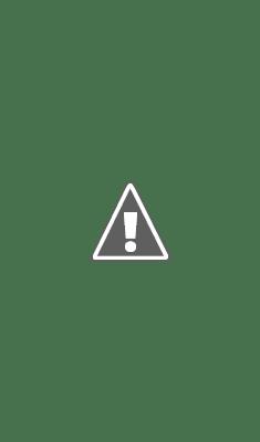 Pyare Nabi (S.A.W) Ki Pyari Sunnatain By Maulana Hakeem Muhammad Akhtar Sahib Pdf Book Free Download