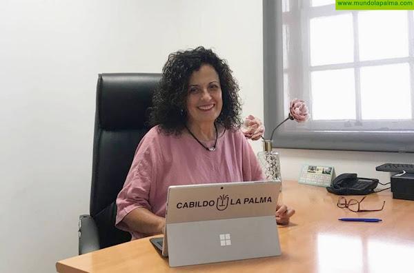 El Cabildo de La Palma aprueba el Plan Estratégico de Participación Ciudadana