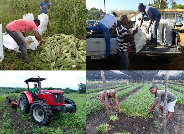 Resultado de imagem para américo e a agricultura familiar