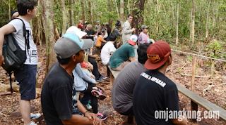 orangutan tanjung puting kalimantan