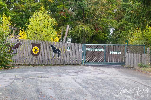 Tor zum WildtierPark Edersee