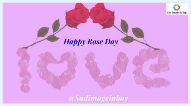 Rose Day Images | happy rose day my love images, happy rose day hd images, rose day images for friends