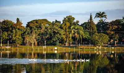 O lago da Praça Vitória Régia, visto a partir do jardim da Confeitaria Holandesa. Os conversíveis do Clube do MP Lafer ficarão estacionados ao longo da margem oposta.