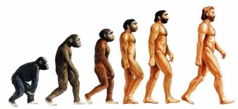evidences of evolution tale of life