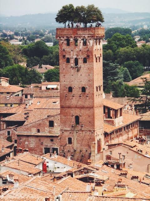 Guinigi tower Italy