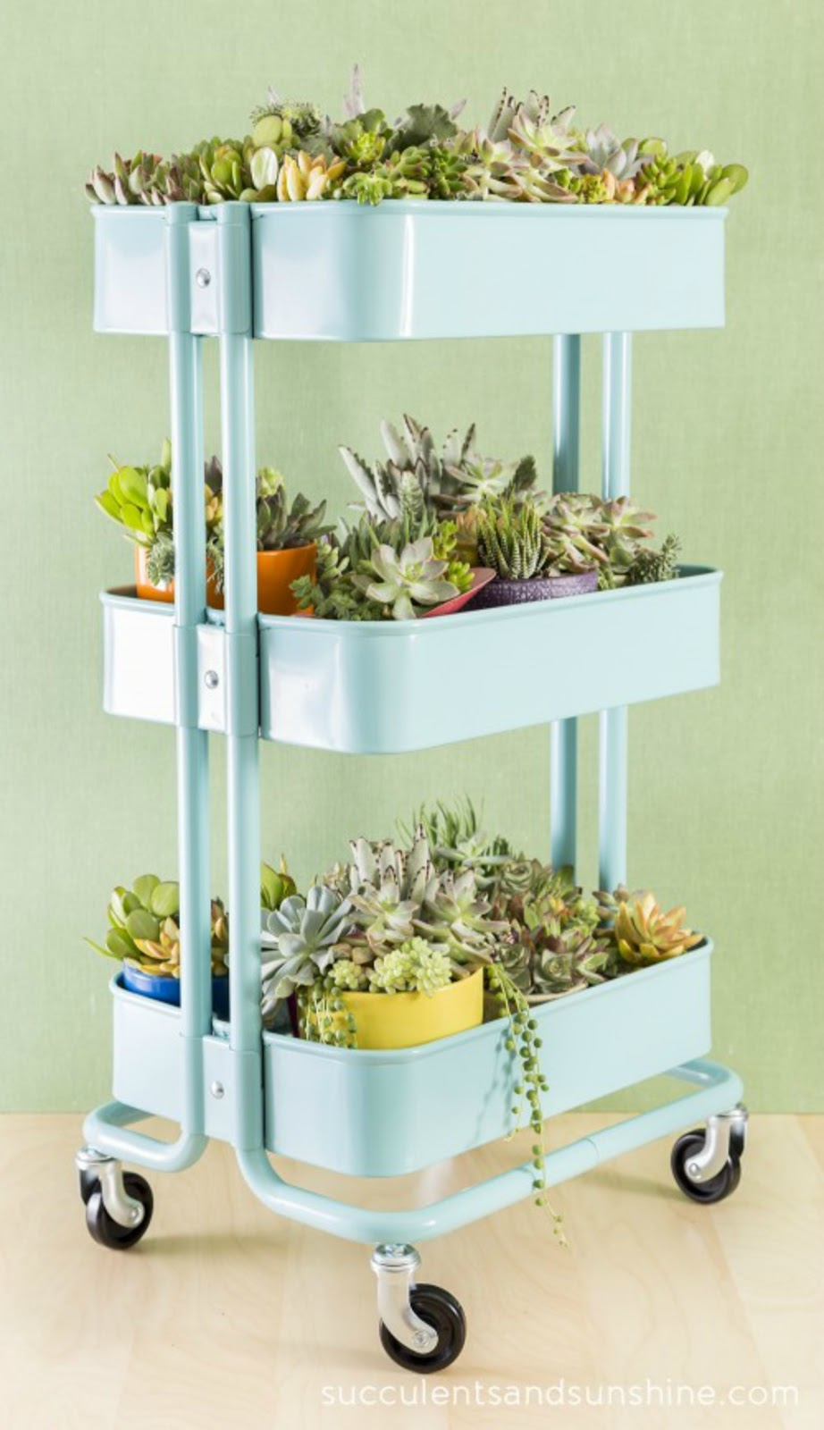 14 Ways to Display Succulents - Succulent Bar Cart