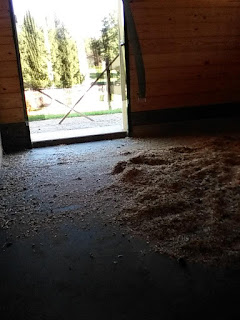 Greatmats Horse Stall Mats with shavings bedding