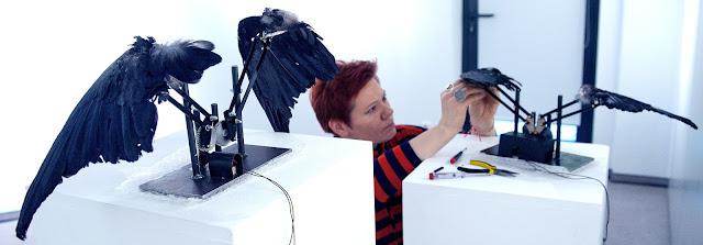 Taiteilija Eeva-Liisa Puhakka kiinnittää liikkuvaan veistokseen variksen siipeä. Toinen kineettinen veistos on jo valmiina veistosjalustalla. Se muodostuu variksen siivistä ja moottorista, joka heiluttaa siipiä.