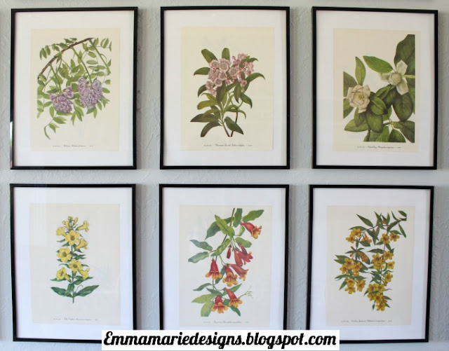favorite botanical prints from the statement making art wall @ emmamariedesigns.blogspot.com