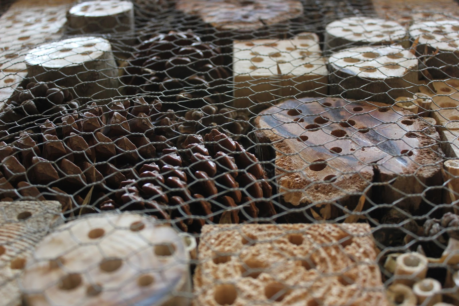 netting over luxury insect hotel