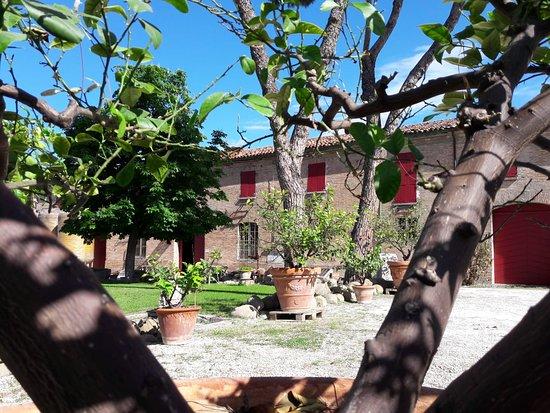 fattoria_del_piccione