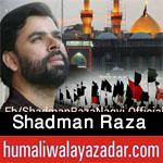 http://www.humaliwalayazadar.com/2012/10/shadman-raza-nohay-2010-2013.html