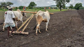 government-disinterested-in-farmer