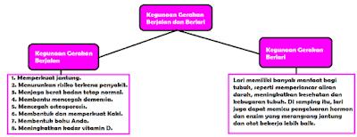 diagram Kegunaan Gerakan Berjalan dan Berlari www.simplenews.me