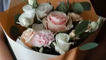 Flowers With Skin Benefits That Make You Look More Beautiful • Success City