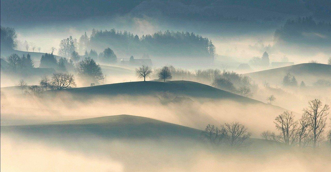 snackenglish, fog, mist, haze, smog, niebla, neblina, meadow, prado