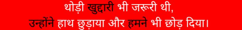 thodi khuddaari bhi jaroori thi