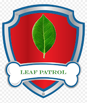 Game for the pool: Leaf Patrol